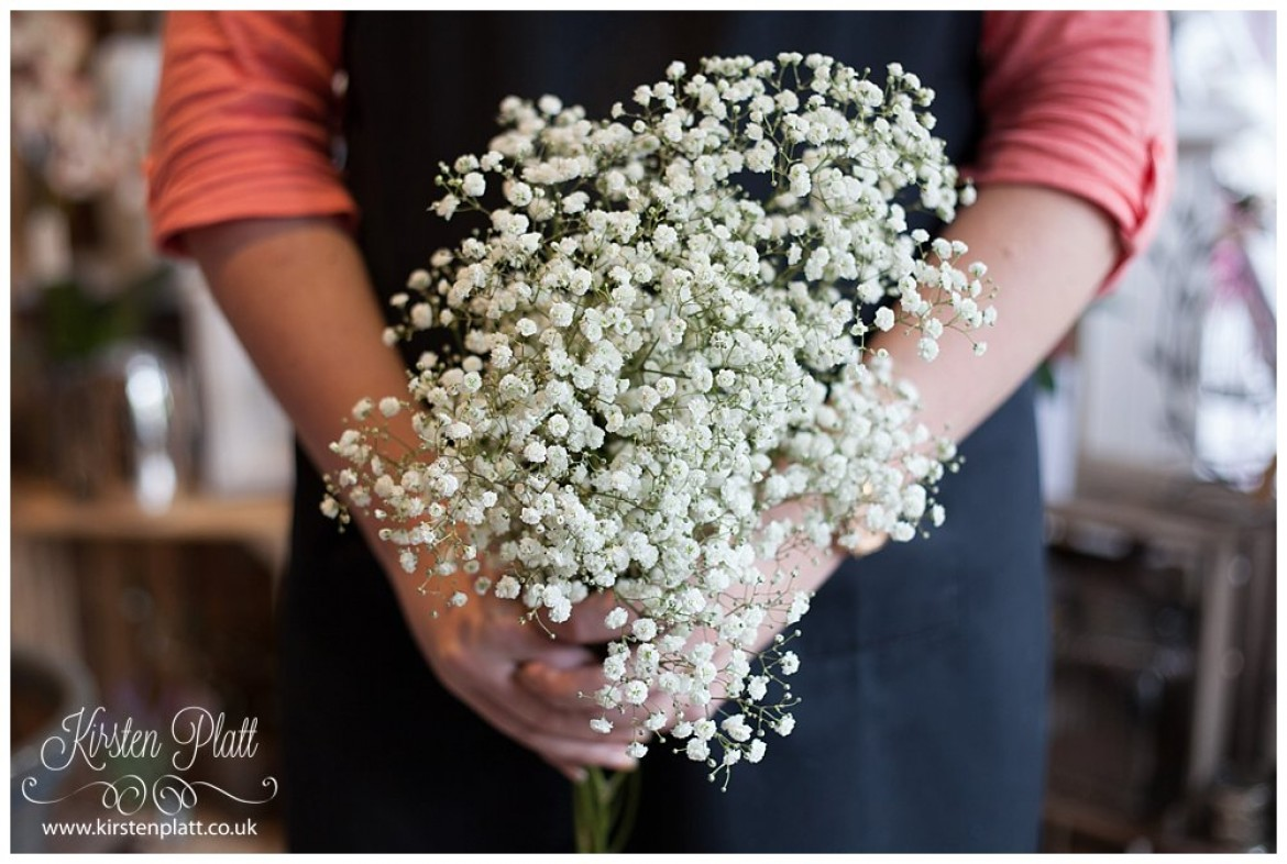Flower Power Thursday: Gypsophila