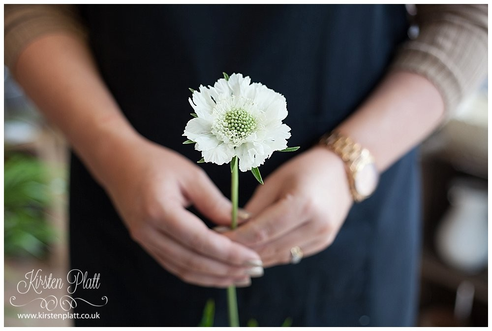 Flower Power Thursday Scabious White form Voila Florist