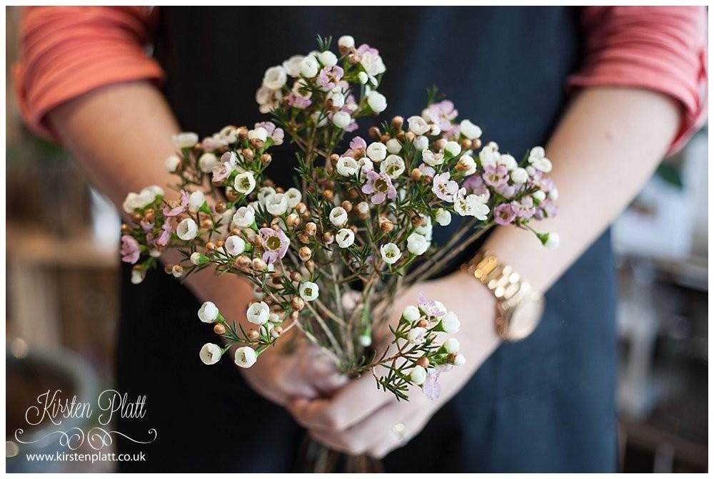 Flower Power Thursday: Wax Flower - Kirsten Platt