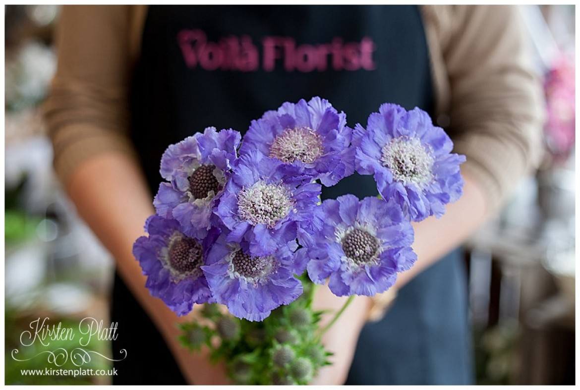 Flower Power Thursday: Scabious Blue