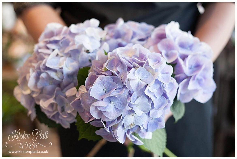 Flower Power Thursday Hydrangea